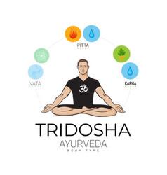 Ayurvedic doshas in balance yogi man vector