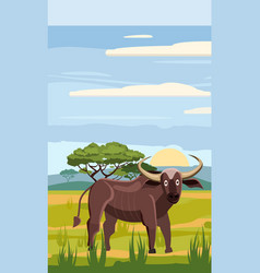 bufffolo cute cartoon style in background savannah vector image