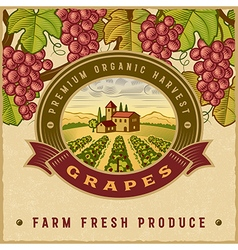 Vintage colorful grapes harvest label vector