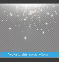dust on a transparent backgroundbright starsthe vector image vector image