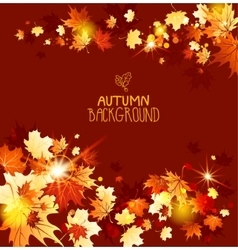 Background with fall maple leaves vector