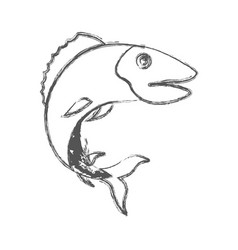 blurred sketch silhouette of trout fish vector image