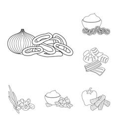 Design of taste and crunchy sign set of vector