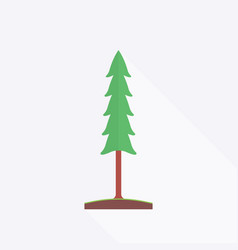 fir-tree in flat design style vector image