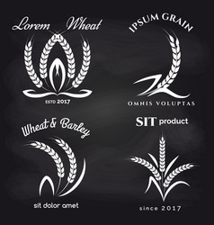 Grains product label on chalkboard vector