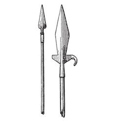 Hunting spears from 15th or 16th century vector