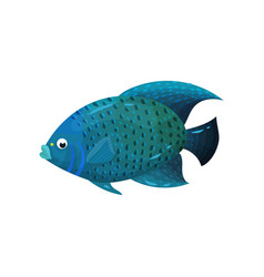 Predatory blue-colored fish with big fins side vector