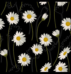 seamless pattern with white daisies on black vector image