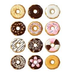 Set delicious donuts in glaze vector