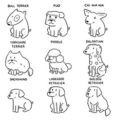 set dog vector image