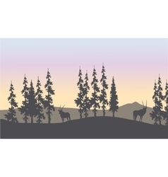Silhouette of spruce and antelope vector