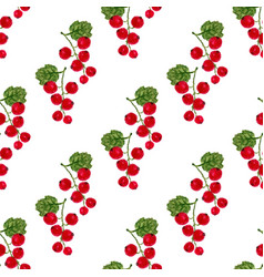 Watercolor seamless pattern with red currant vector
