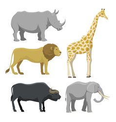 cute cartoon safari animals vector image