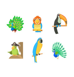 exotic bird icon set cartoon style vector image