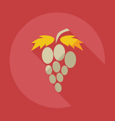 Flat modern design with shadow icons grapes vector