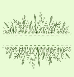 green background with herbs and flowers vector image