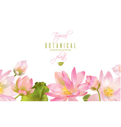 Lotus flower banner vector