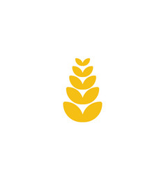 wheat grain agriculture logo designs inspiration vector image