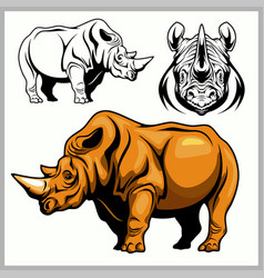 rhinoceros in a profile and front view vector image vector image