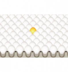 yellow egg and white eggs vector image