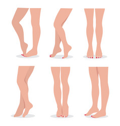Beautiful elegant woman legs and feet in different vector