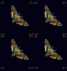 Butterfly deaths head hawk moth seamless pattern vector