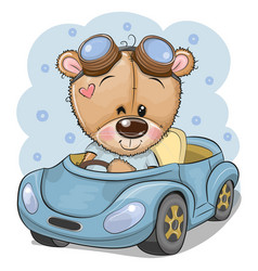 Cartoon teddy bear in glasses goes on a blue car vector
