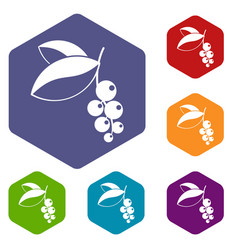 Currant berries icons set hexagon vector