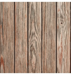 Dry Wooden Planks vector image