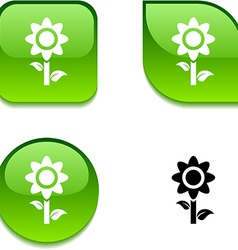 Flower glossy button vector image