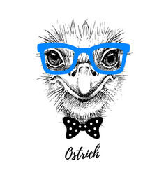 hand drawn sketch ostrich hipster head isolated vector image