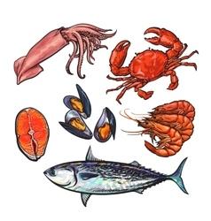 Isolated set of fresh marine products vector image