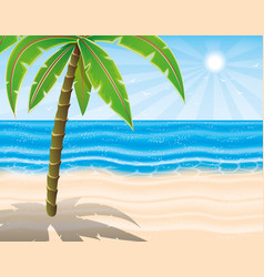 palm tree on the beach vector image