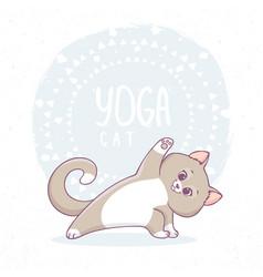 cat yoga asana vector image