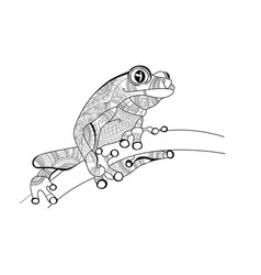frog on the branch doodle for coloring vector image vector image