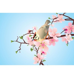 bird on the blossoming cherry detailed vector vector image vector image