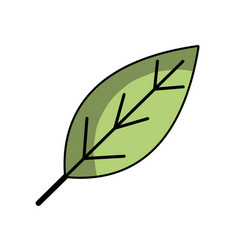 natural leaf symbol to conservation the vector image