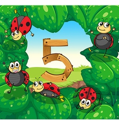 Number five with five ladybugs on leaves vector