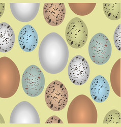 Seamless pattern bird eggs vector