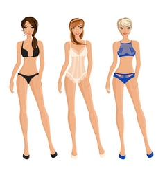 Set Of Women Underwear vector