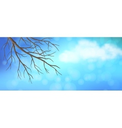 Sky tree branches panoramic banner vector