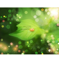 summer background with green blur and leaf vector image vector image