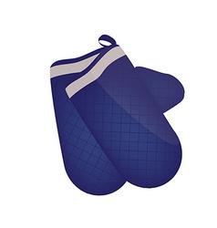 Blue kitchen mittens vector image