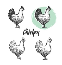 Chicken logotypes set Hen meat and eggs vintage vector image