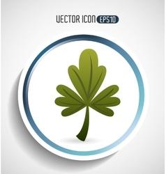 corainder leaf design vector image