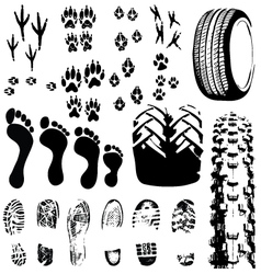 Animal and human foot prints vector