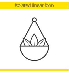 Apothecary herbs in scalepan linear icon vector