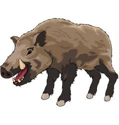cartoon brown boar vector image