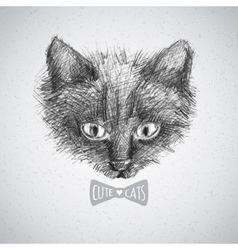 Cat face sketch vector