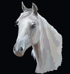 colored horse portrait-3 vector image